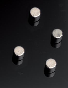 Naga magneet voor glasborden, cilinder, 4 stuks